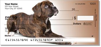 Boxer Pup Design Checks