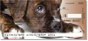 Boxer Pup Personalized Checks