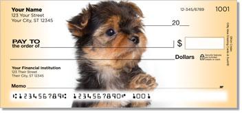 Yorkie Pup Design Checks