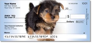 Yorkie Pup Personalized Checks